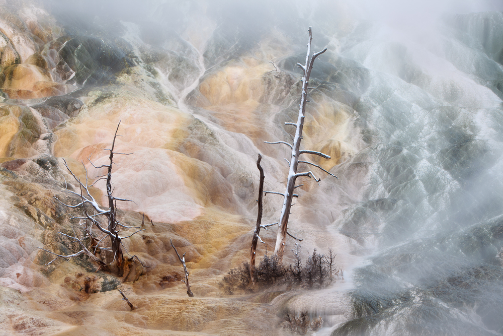 Mist swirls around a geothermal spring at Yellowstone National Park's Mammoth Hot Springs.   Image ©Connor Stefanison