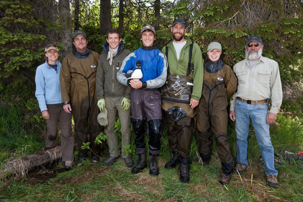 A group shot of the Biodiversity Research Institute field biologists in Grand Teton National Park, USA. From left to right: Allison Byrd, Vincent Spagnuolo, Carl Brown, Nick Rosenberger, Chris Persico, Michelle Kneeland, and Jeff Fair. This team is focusing their efforts in Wyoming, Montana, Washington, British Columbia, and the eastern USA.   Image ©Connor Stefanison