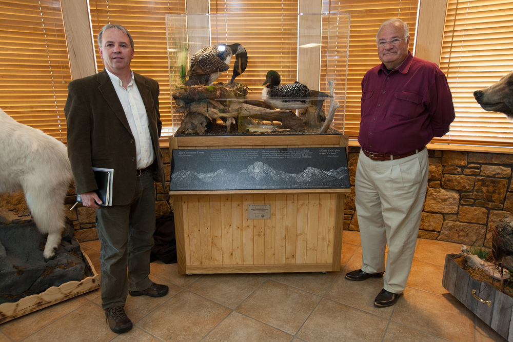 Biodiversity Research Institute director Dave Evers (left) and Joe Ricketts (right) pose beside a Common Loon diorama, donated by Joe Ricketts, to the Wyoming Game and Fish Department regional office in Jackson. Joe Ricketts donated $6.5 million to fund conservation efforts towards the Common Loon.   In June 2014, I spent two days in Wyoming photographing these conservation efforts for an Audubon Magazine story.   Image ©Connor Stefanison