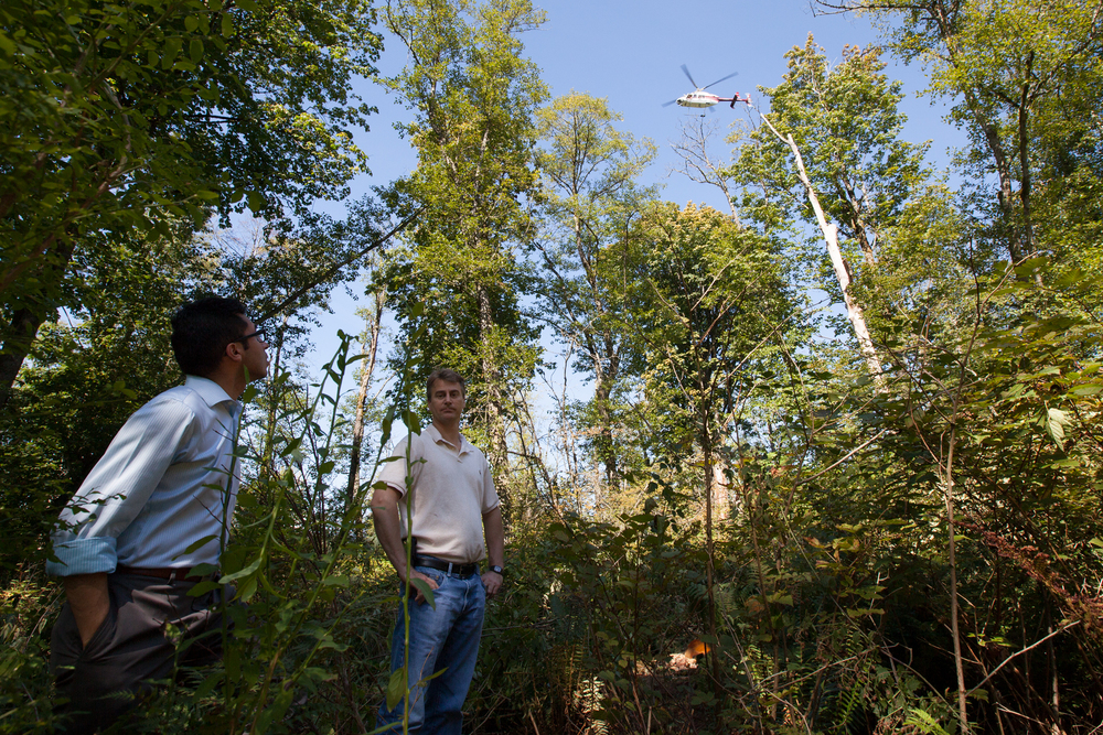 Kinder Morgan employees stand in the area where their company illegaly cut 13 Red Alders in the Burnaby Mountain Conservation Area. The Kinder Morgan helicopter flies above.   Kinder Morgan removed these trees so that they could drill a borehole to survey the mountain for the proposed Trans Mountain Pipeline Expansion Project.