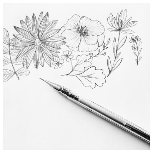 Minna May Design Drawing 2.png