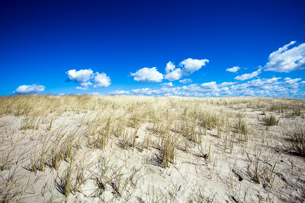Sand dunes and blue skies