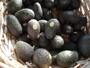 Avocados!! (If they were a guy, I would marry them:))