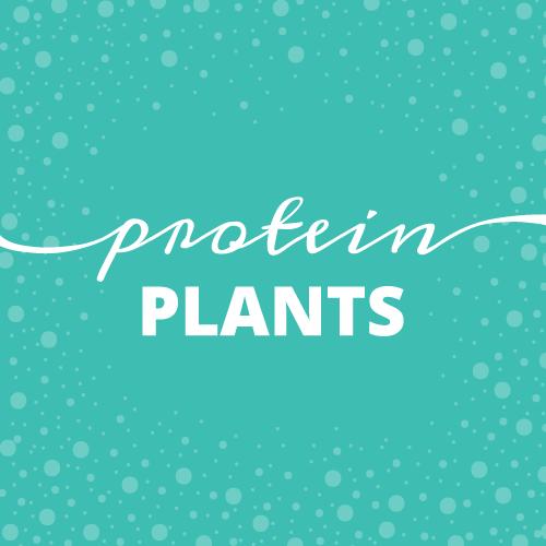 Dear Sarah: Protein Plants