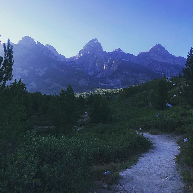 Baby River and I took a little hike down a trail in the park and caught this majestic twilight view of the Grand and sister peaks. ⛰#grandtetonnationalpark #hike #fitmama #grandtetons #jacksonhole #mountainmama #mountains #crunchymama #eveninghike #healthymom #boymom #nationalpark #ergobaby360