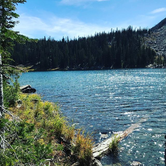 Alpine lakes are my favorite! These stunning bodies of sparkling water in the vast wilderness always remind me of how great our Creator is. ☀️This past Saturday baby River and I trekked up to Goodwin Lake. (Husband and his cousin also joined us.) 🍂 Starting elevation is 8120 feet and the lake is at 9550 feet. It's about 3.5 miles one way and I was excited to reach our destination in 75 minutes, including a water break stop! 🦋This ultra runner mama still has it in her. Ha! I baby wore River so when I do run ultras again I'll be stronger than ever. 😍I'm excited to show my son nature and explore with him! 🐻Thankfully the only bear on the trail was this mama bear. 🤱🏼#AlpineLake #jacksonwy #thatswy #grandtetons #mamabear #babywearing #boymom #crunchymama #ultrarunner #athlete #naturalliving #ergobaby #mountainlife