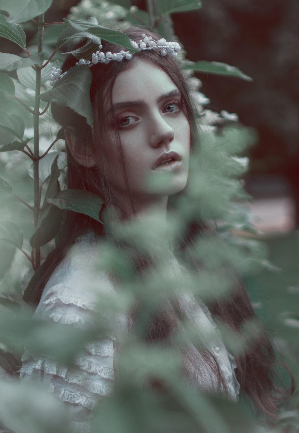 Adele8 Crop FB.jpg