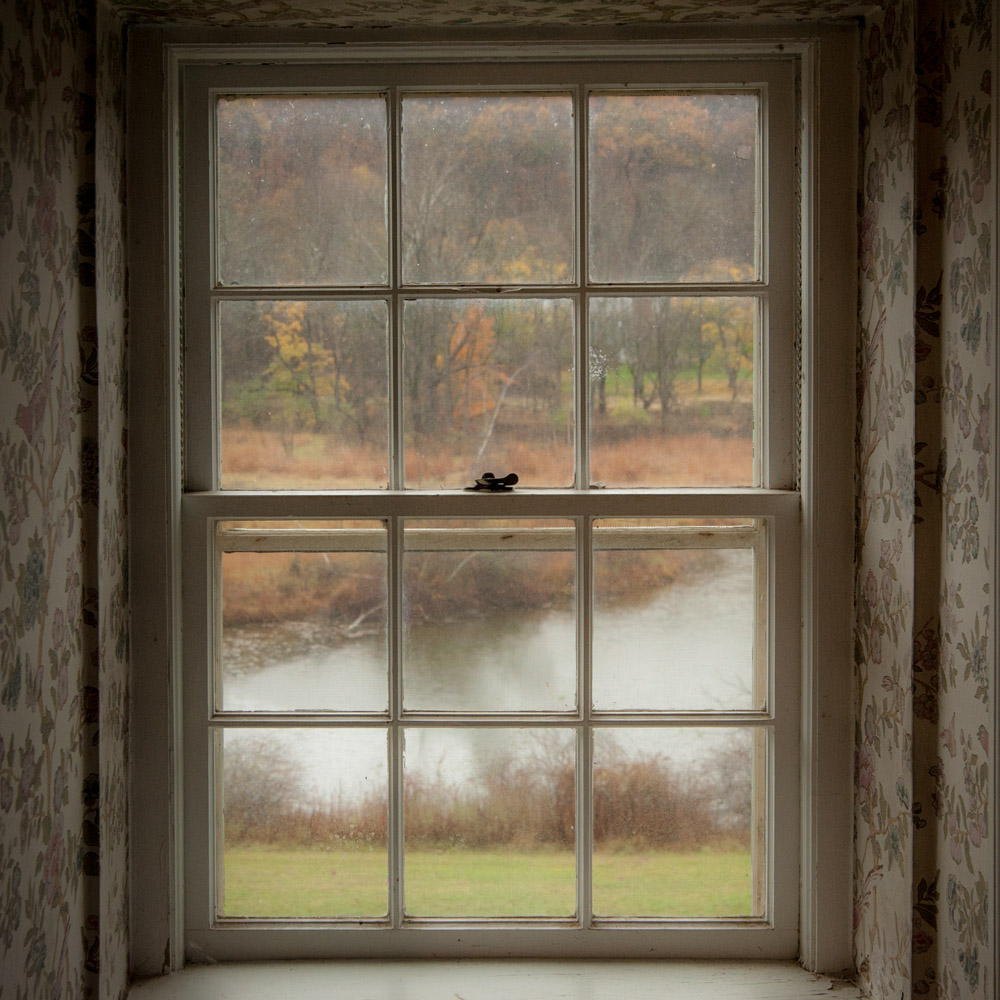 view of pond from inside on a foggy day