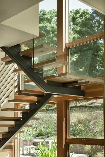 modern-wood-windows-austin-texas.jpg