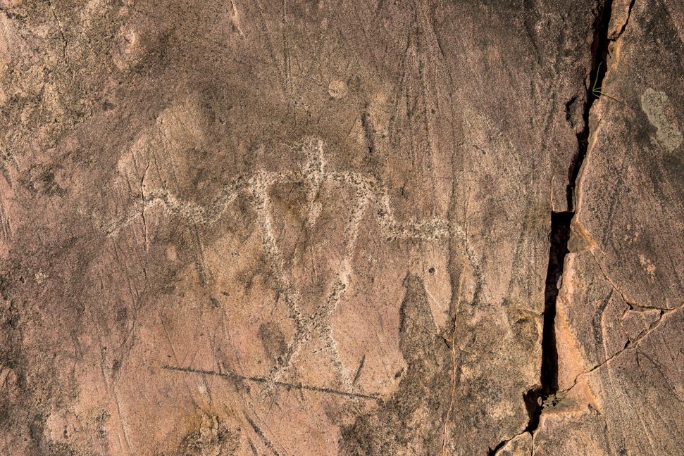 Thunderbird, Jeffers Petroglyphs Historic Site, Comfrey, Minn.