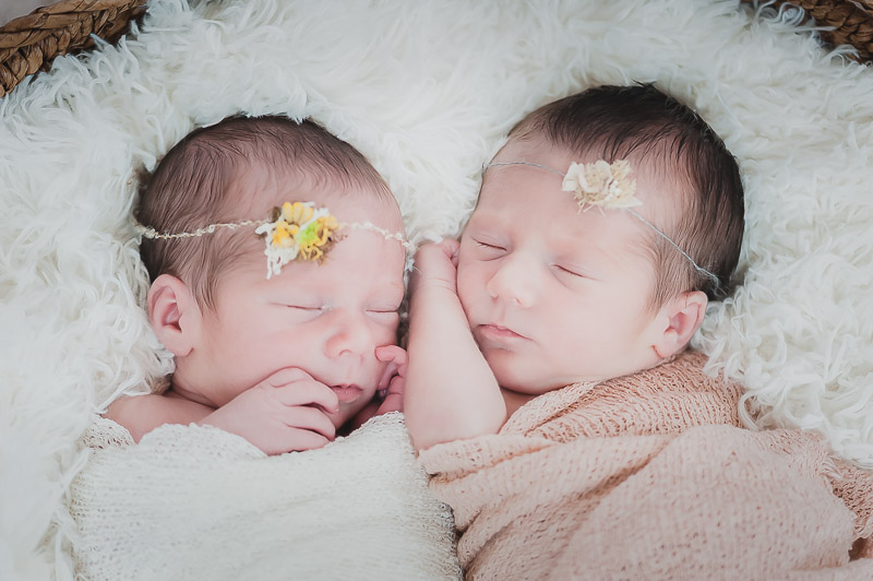 Girl twins swaddled and sleeping, newborn photography
