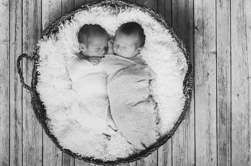 Twin girls swaddled in basket, Ventura newborn photography