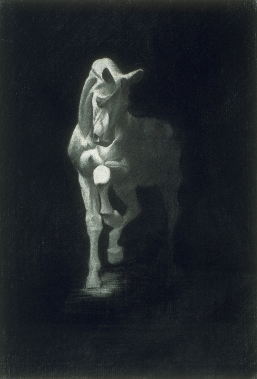 Horse, cast drawing