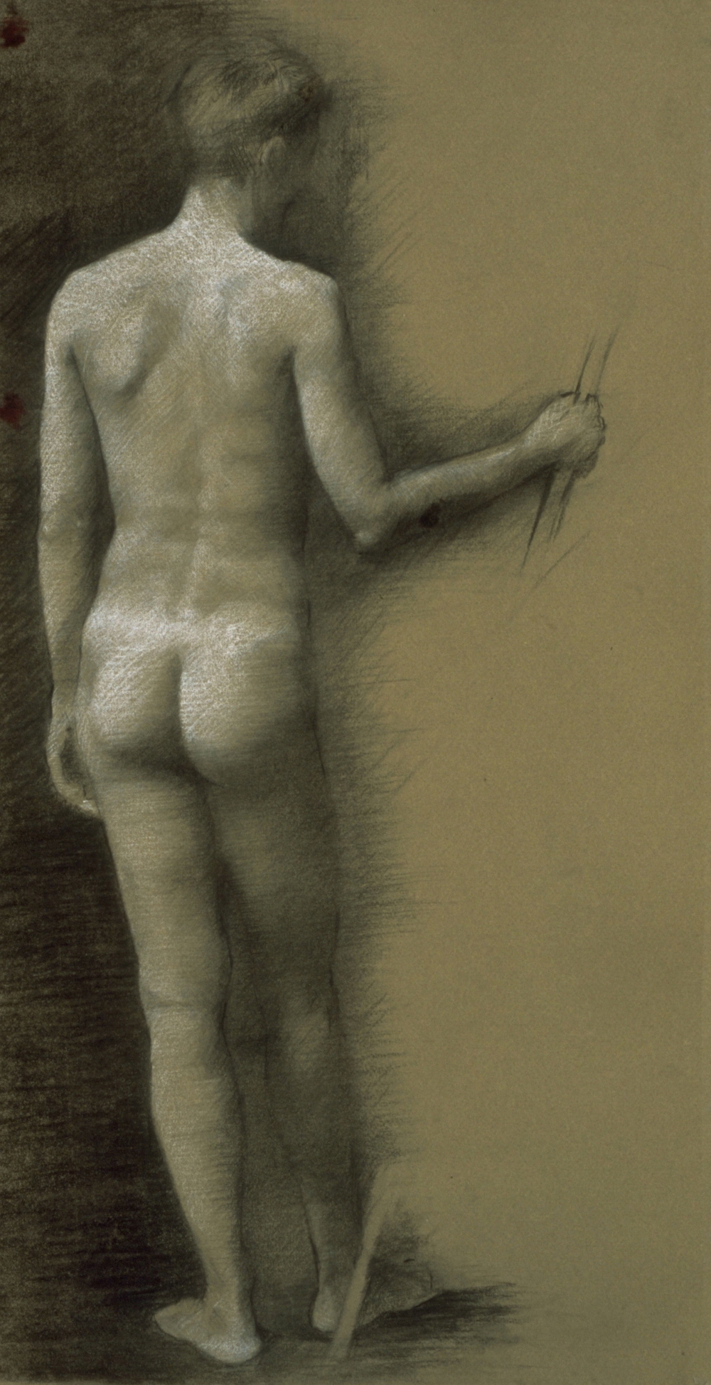 Male Nude, back pose