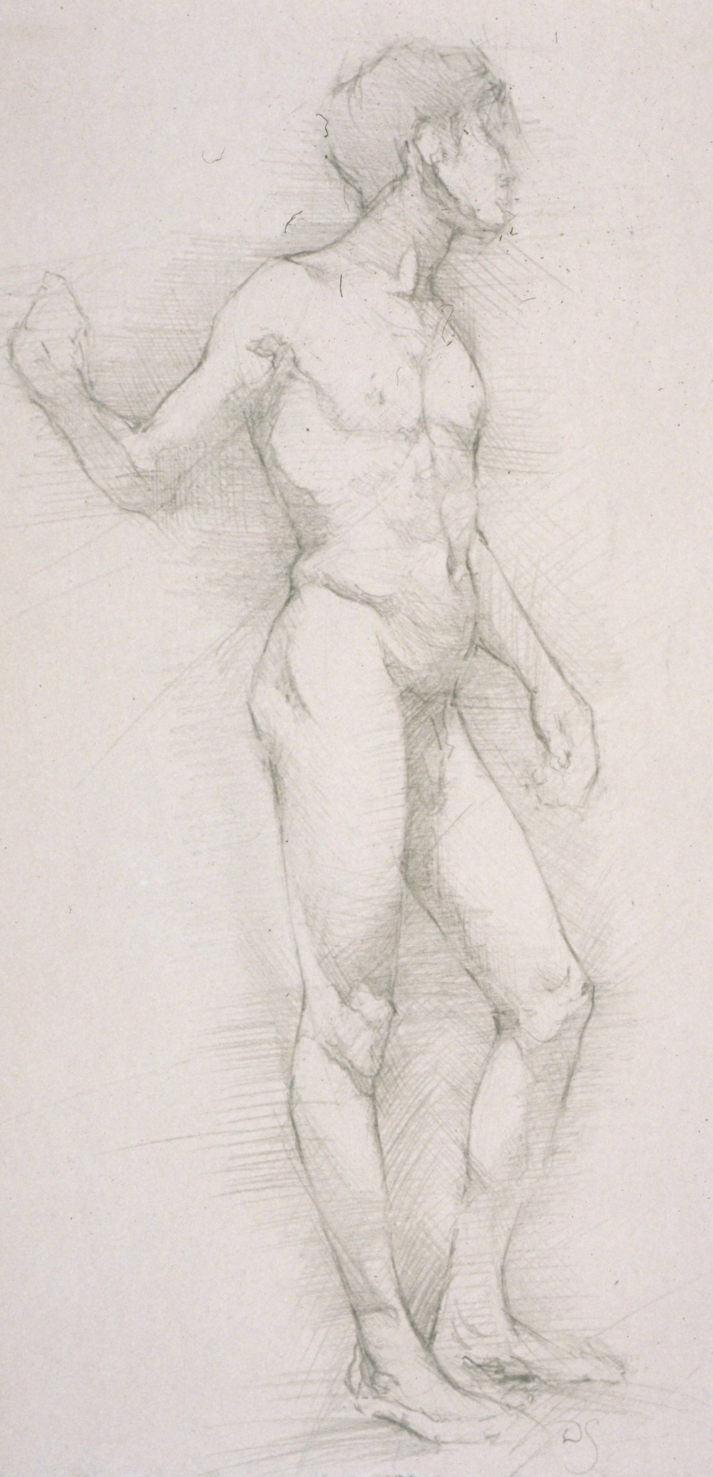 Male Nude, frontal contra posto