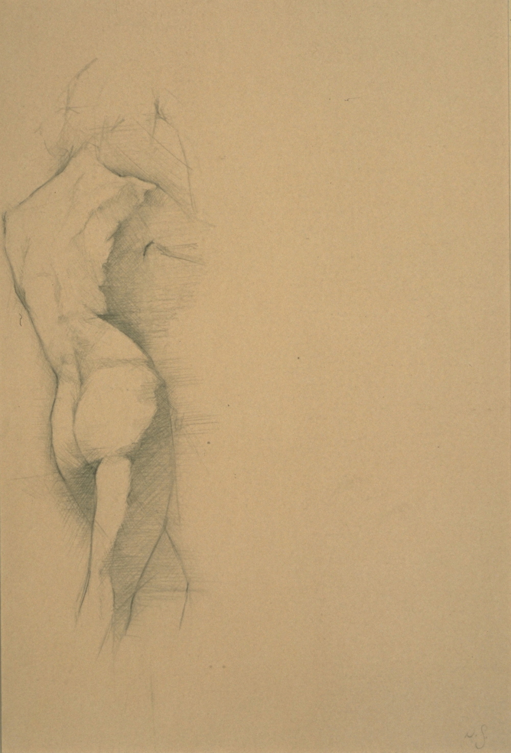 Male Nude, partial side