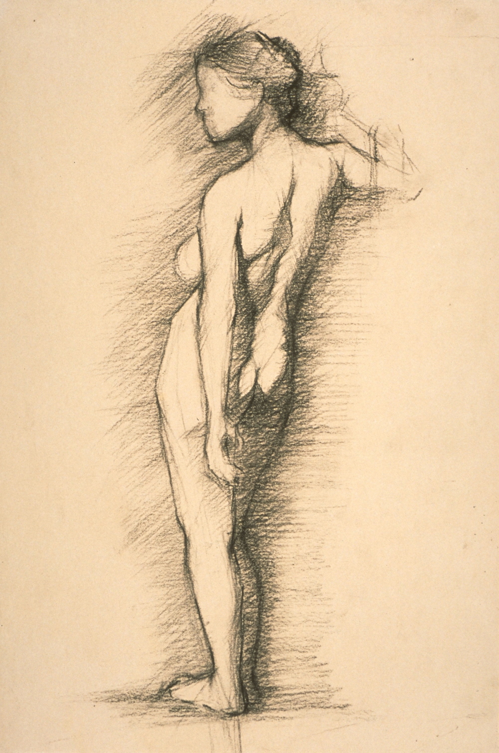 Female Nude, back