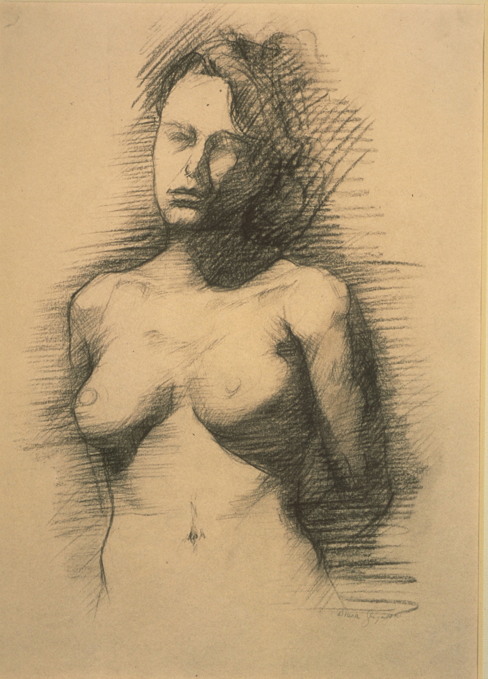 Female Nude, torso