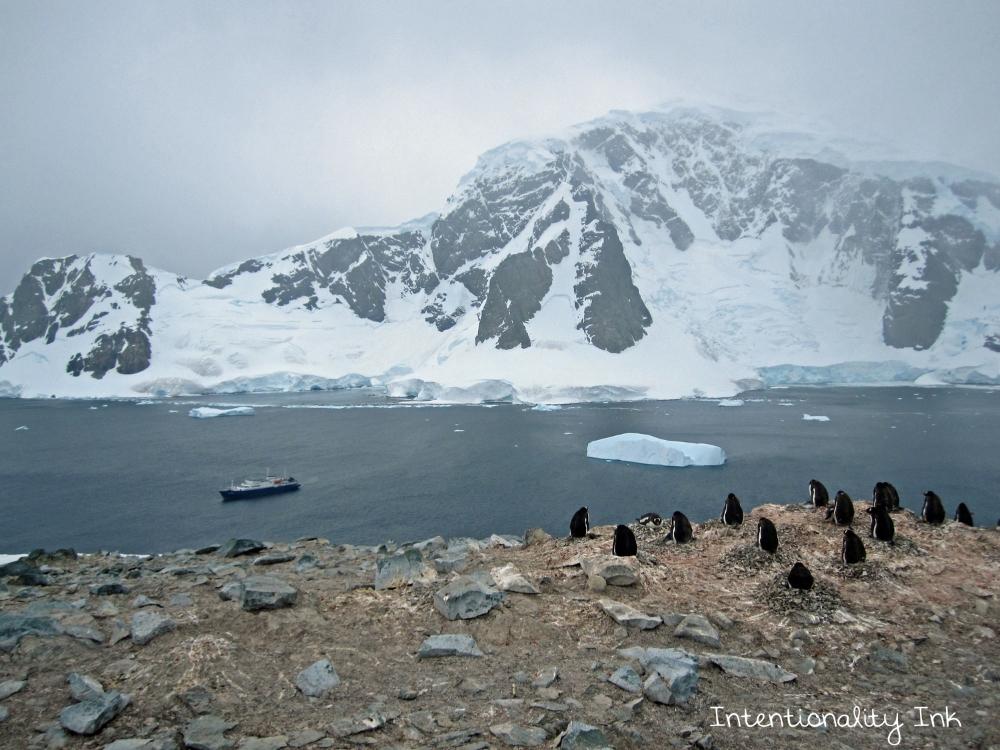 Antarctica Climbing