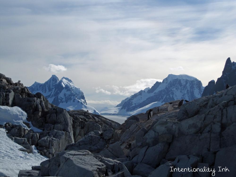 Antarctica Hiking