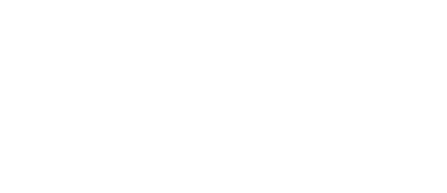 NYC BED BUG INSPECTIONS