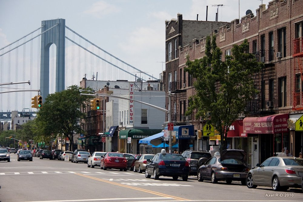 Bay Ridge Bed Bug Inspections