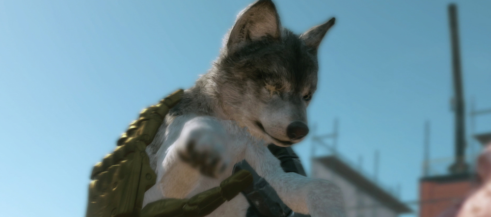 Game of the Year 2015: Olivier Bouchard's Top 10: Metal Gear Solid V: The Phantom Pain for PS3, PS4, PlayStation, Xbox 360, Xbox One, MGS5, MGSV, D-Dog, cutscene,