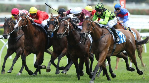 LADY SNIPER Snippetson filly (green colours) ranges up to win the Inglis Sprint