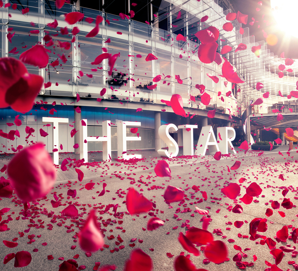electric_art_the-star-valentines-sdw.jpg