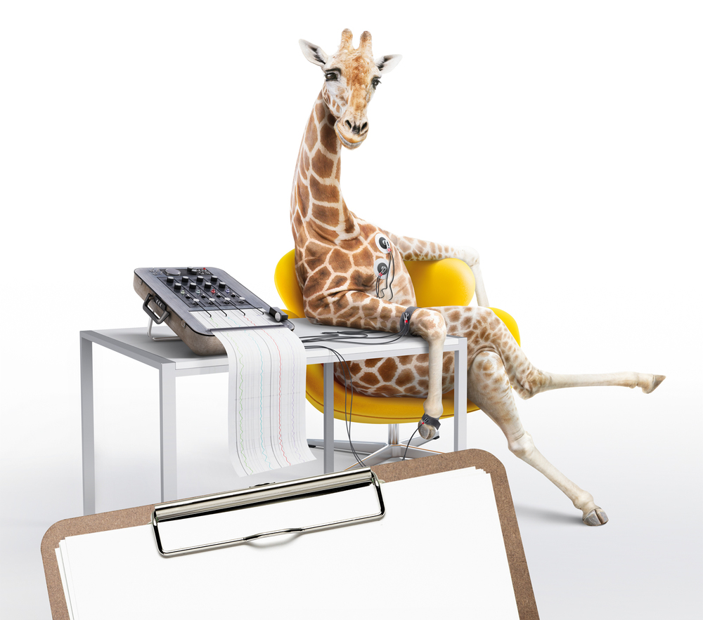 Giraffe-Rough-Comp-6-Proof1.JPG