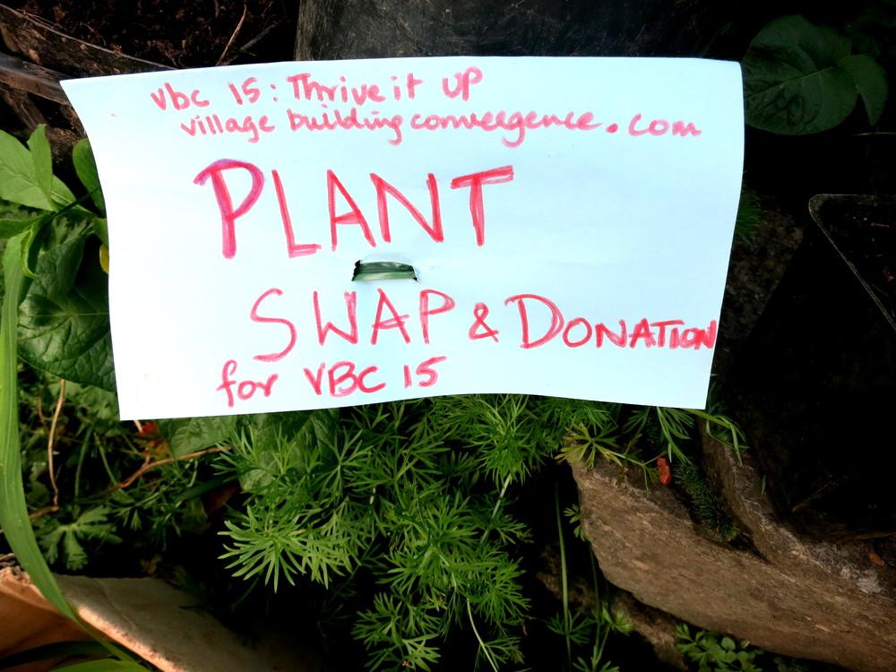 plant swap 0.JPG