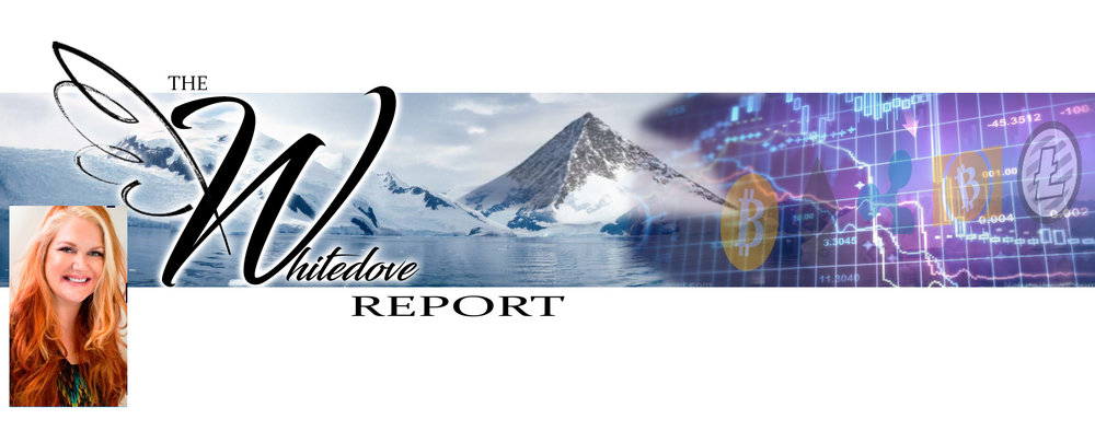 The Whitedove Crypto Report banner