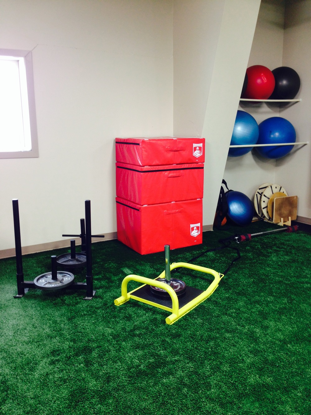 Prowler, Sled, Plyo Boxes, Stability Balls.JPG