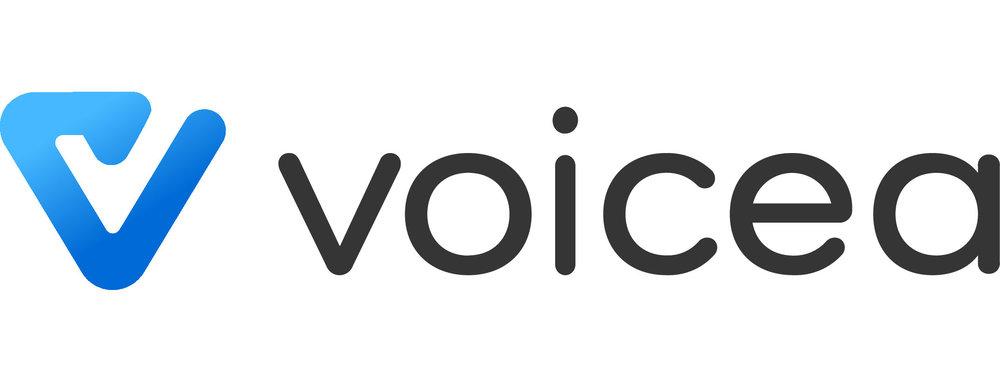 Voicea-logo_less_blackBlack.jpg
