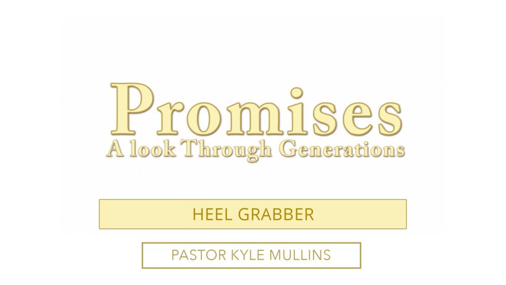 Promise Heel Grabber.png