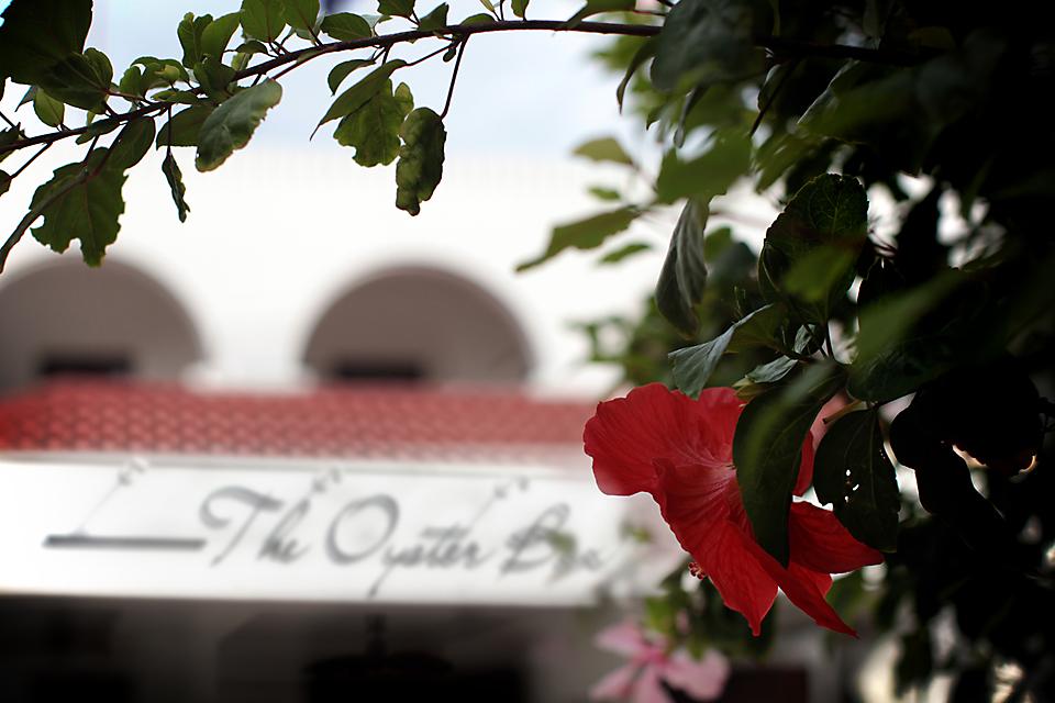 oysterbox-hotel-fashion-blogger-shoes-style-blog-umhlanga-south-africa-amandacusto-blog-fashion-ootd-__ (11).jpg