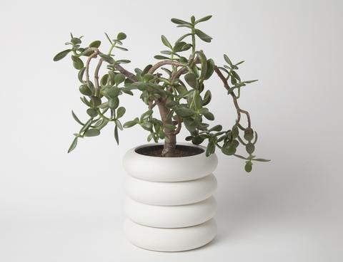 Power Planter, Chen Chen & Kai Williams