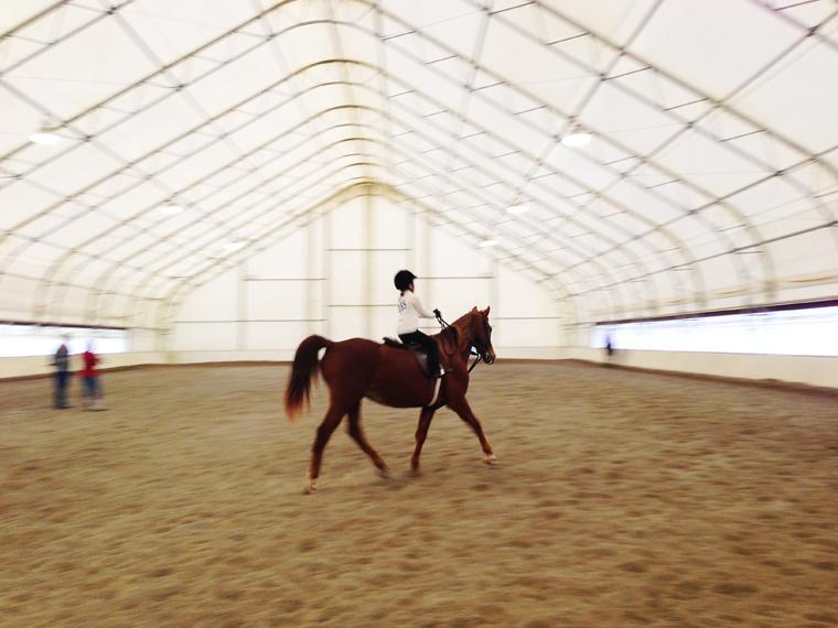 Ellie.horseshow.1.13.2.JPG