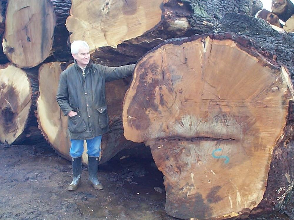 woburn oak jpeg.jpg