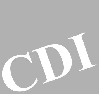 logo-CDI-excel2.JPG