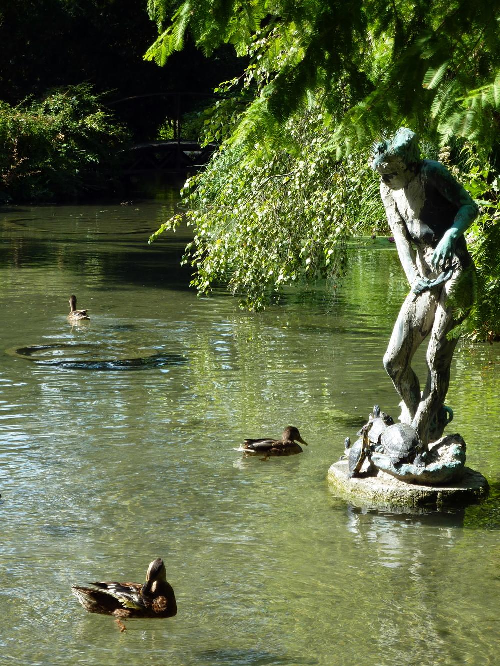Margaretaön är lummig och rik på vattendammar.