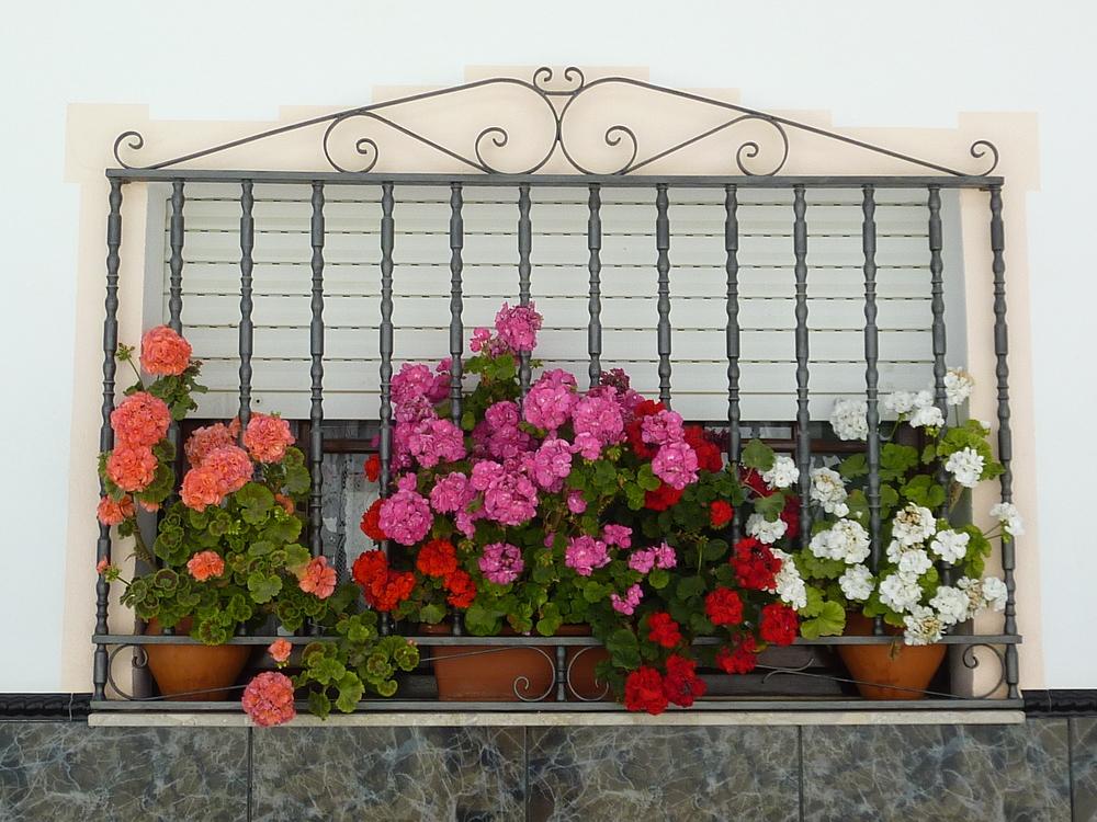 andalucia_window_sanna_rosell