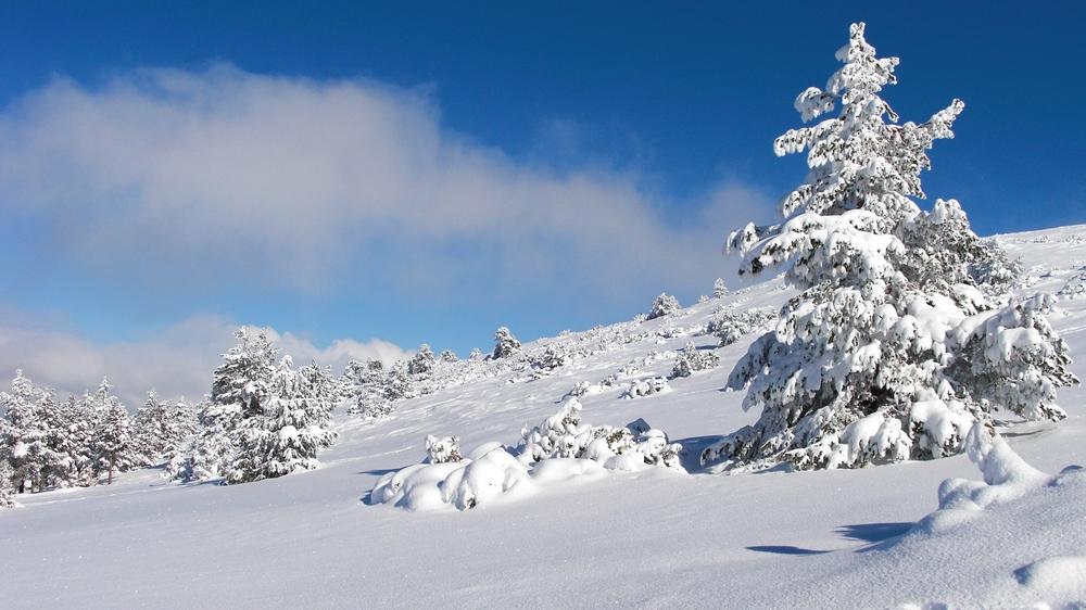 Den senaste gången jag stod på slalomskidor var i Teruel, Spanien, 2009.