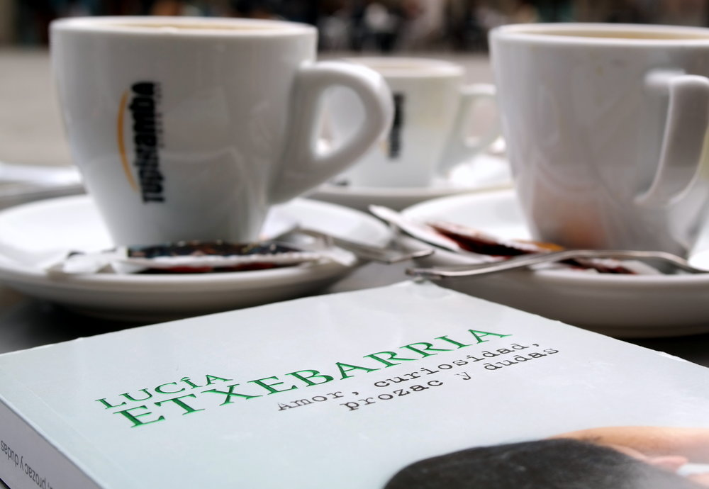 Bra bok av spanska Lucía Etxebarria.