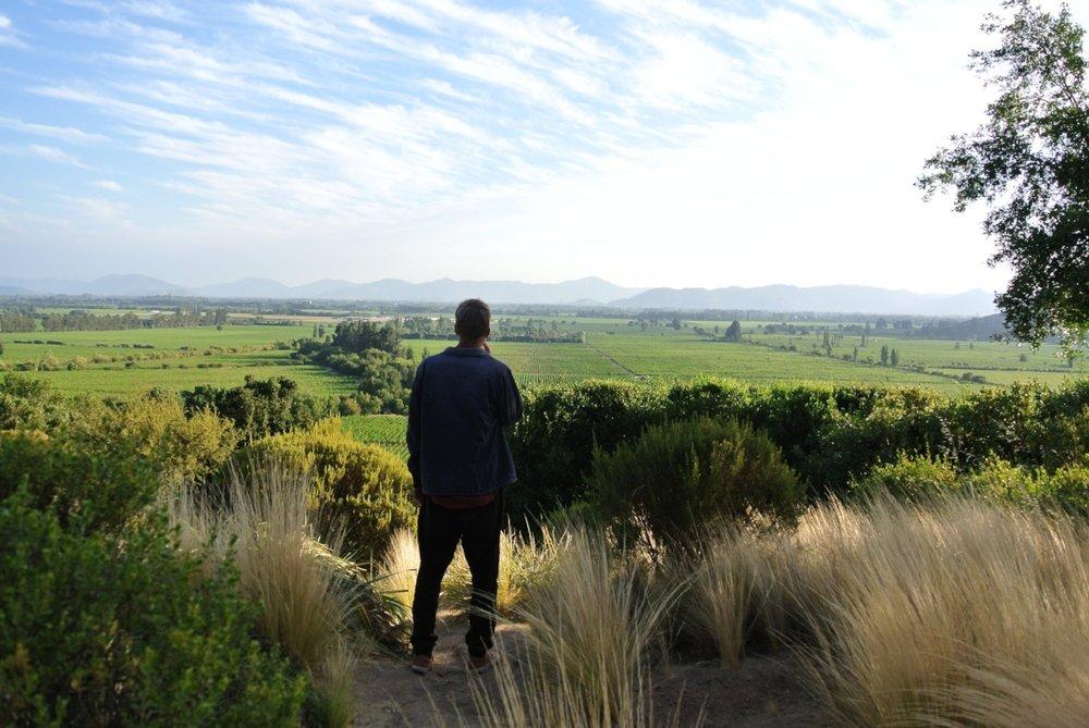 Regionen Santa Cruz är känt för sina vidder av vinodlingar.