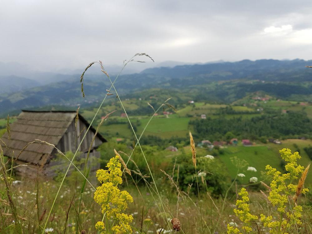 Vandra i nationalpark med utsikt över berg och dalar.