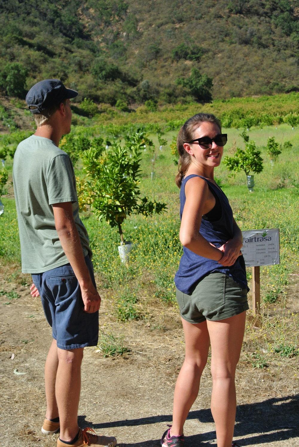 Blir 26 år på en vingård i Chile - och har äntligen (nästan) fått smak på vuxenviner!