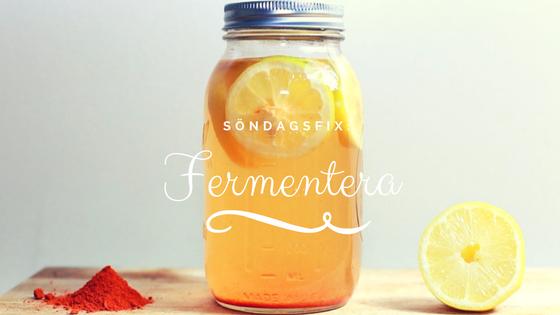 fermentera.png