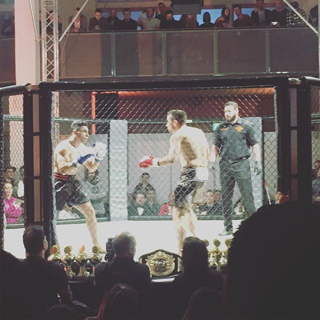 Fast knock out! #cagefighting