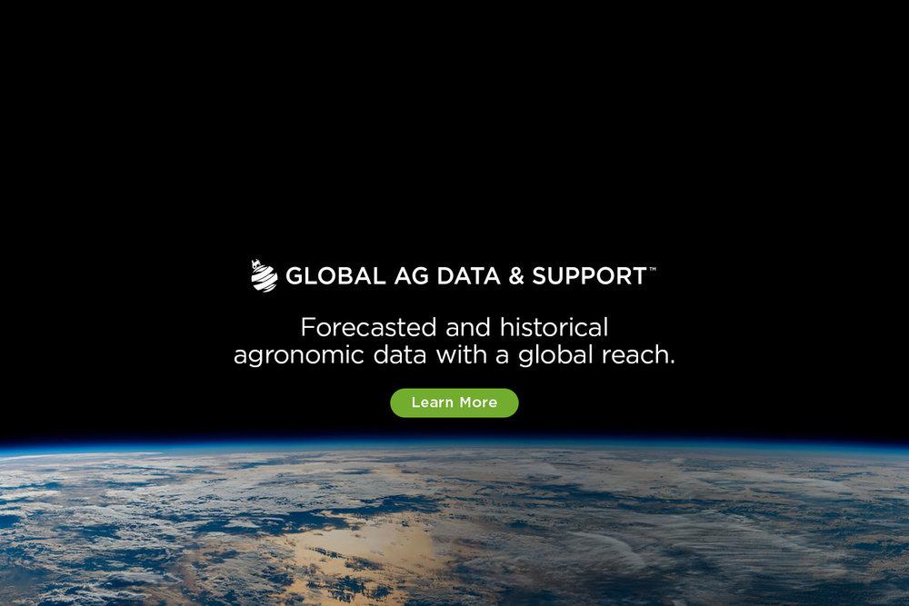 global-2.jpg